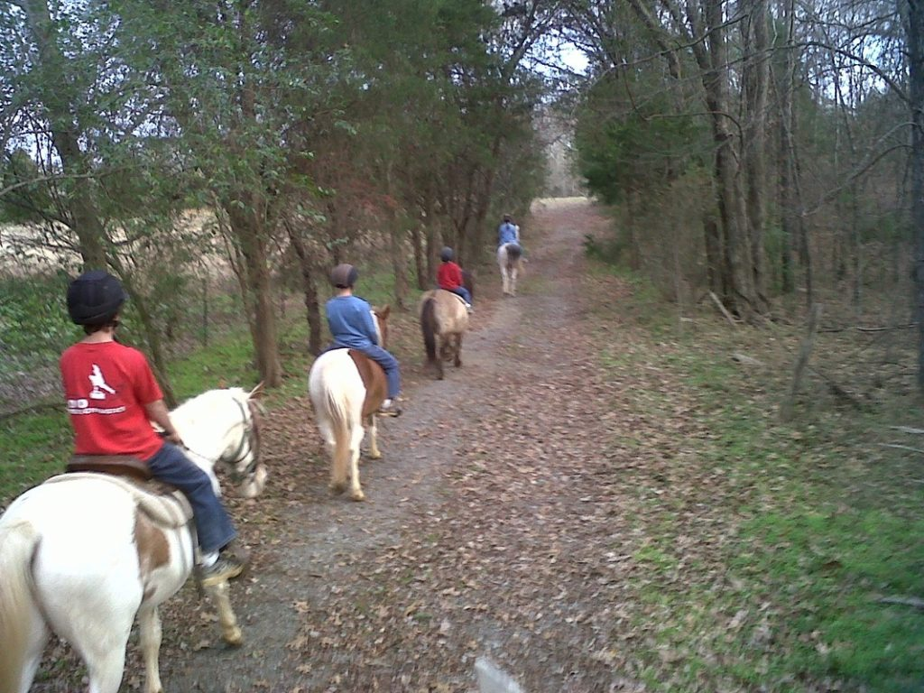 or just ease on down the trail, Kandy's Chance Ranch can help you reach your goal.